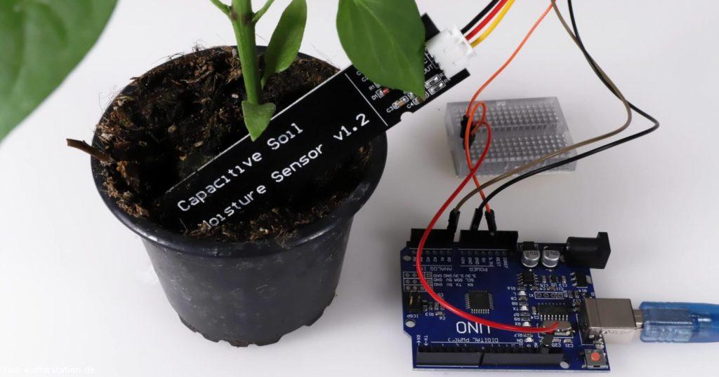 arduino capacitive soil moisture sensor pflanze